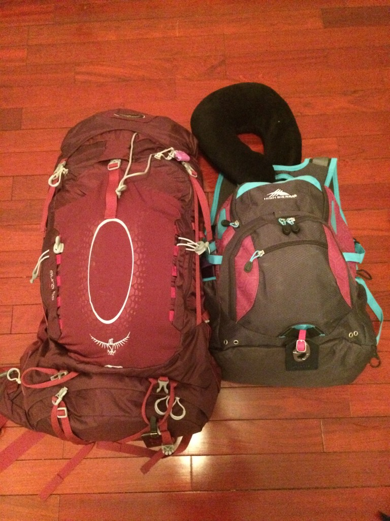 Emily's two bags