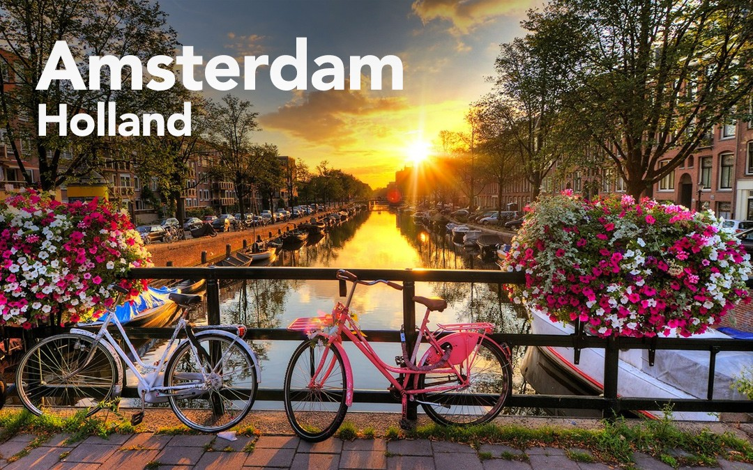 Image result for holland