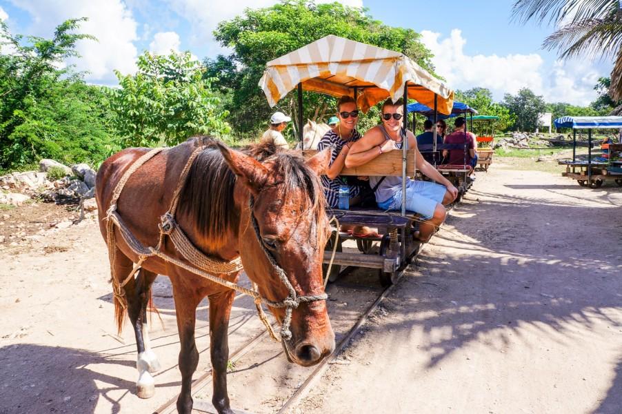 Horse Rail Carriage