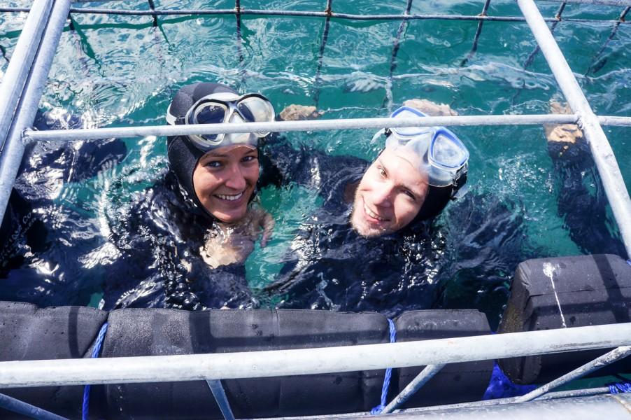 Shark Cage