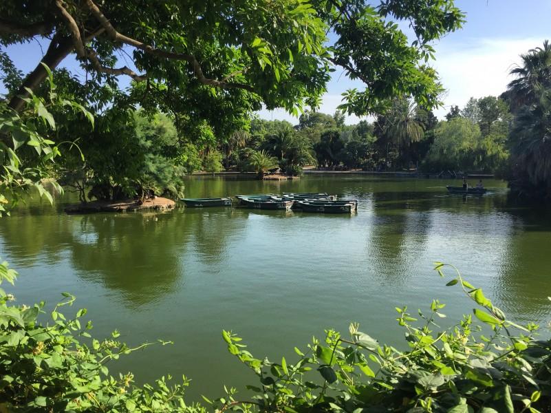 Row Boats in Parc de la Ciutadella