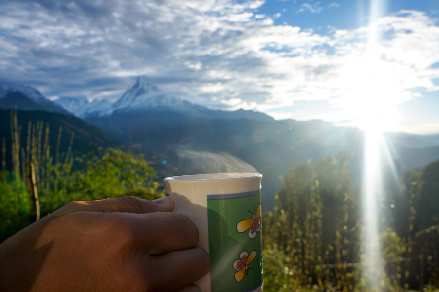 Sunrise Tea