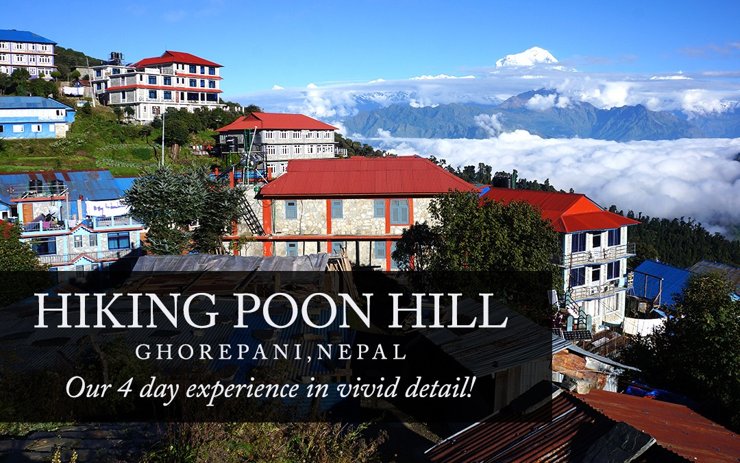Our 4 Day Trek to Ghorepani Poon Hill, Nepal
