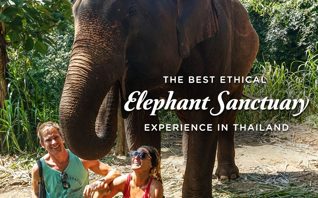 The Best Ethical Elephant Sanctuary Experience in Thailand?
