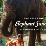 Best Elephant Sanctuary Experience Thailand