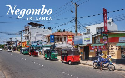 1-3 Days Transit in Negombo, Sri Lanka