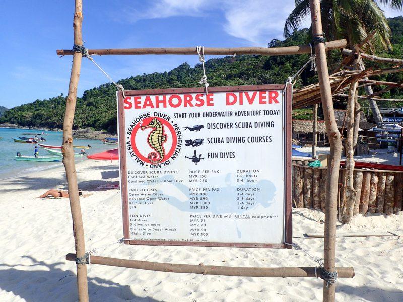 Seahorse Diver
