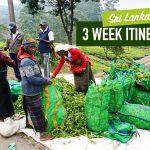 Sri Lankan Itinerary