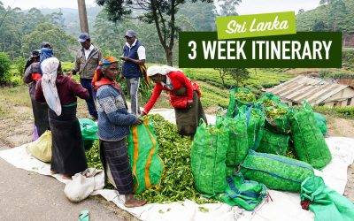 Sri Lanka 2-3 Week Itinerary: Beaches, Hills & Culture