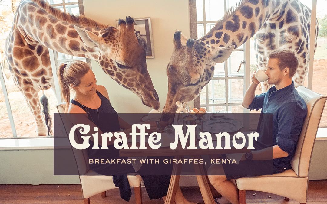 Breakfast with Giraffes: Giraffe Manor, Nairobi, Kenya