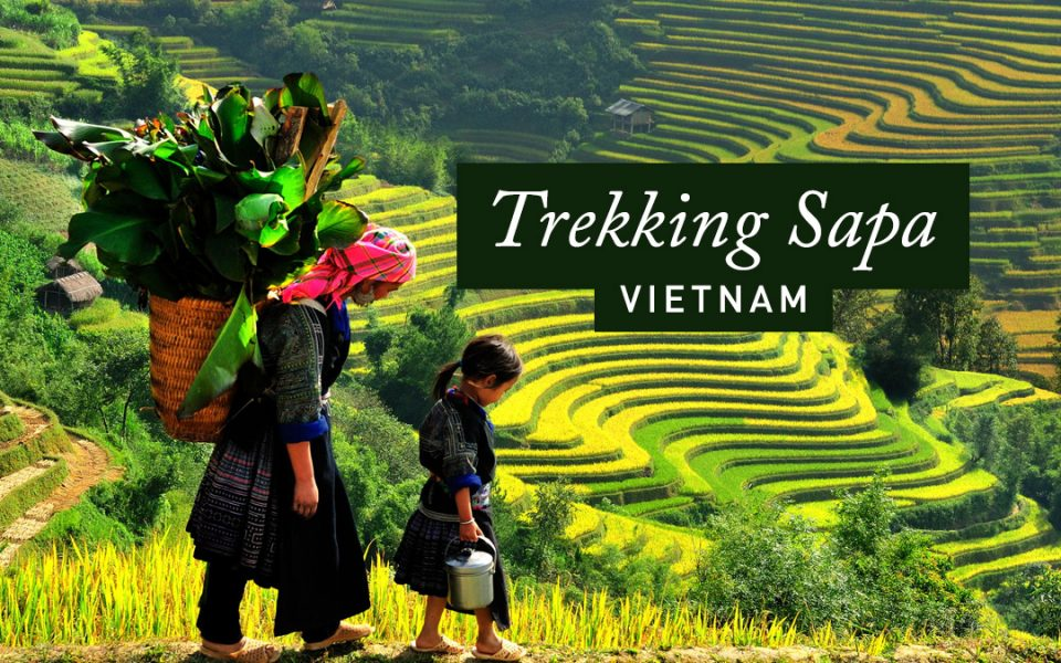 Guide to Trekking Sapa, Vietnam: Tips & Advice | Just Globetrotting