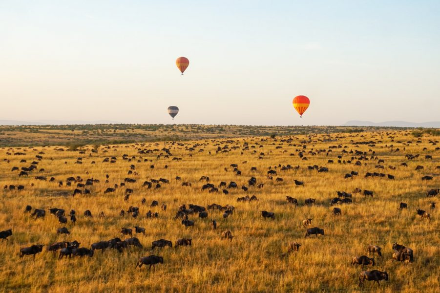 Hot Air Ballooning Masai Mara