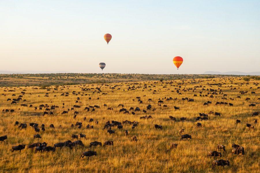 Hot Air Ballooning Masai Mara