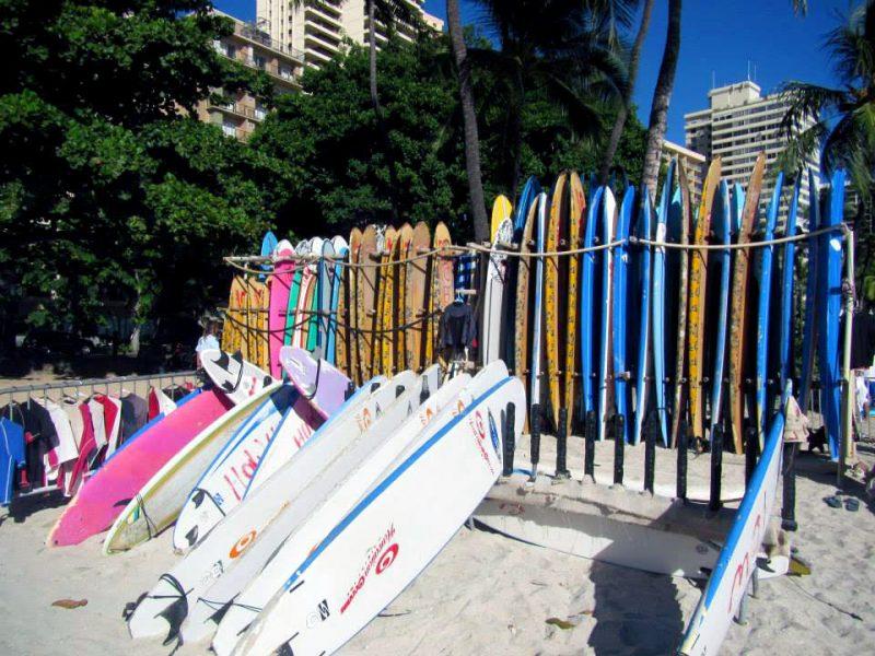 Surf Board Rentals