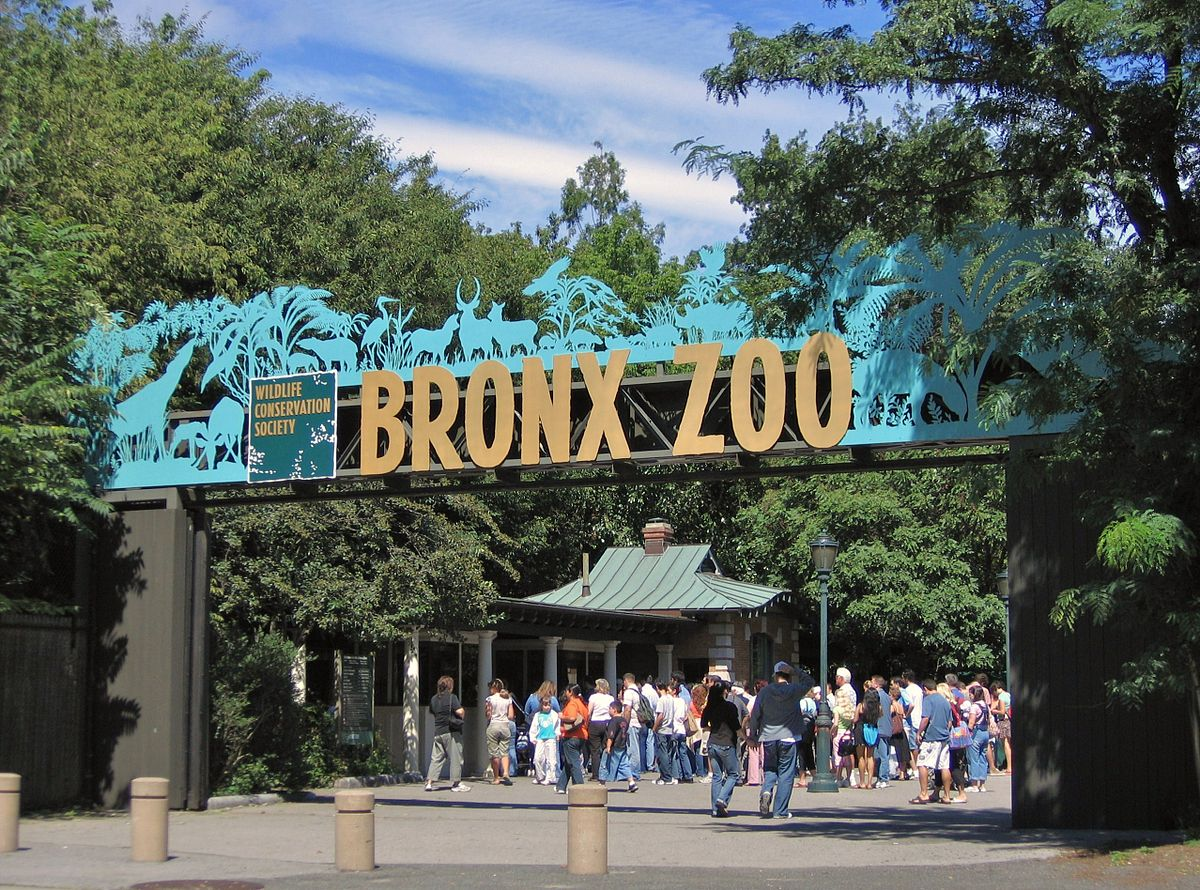 The Bronx Zoo