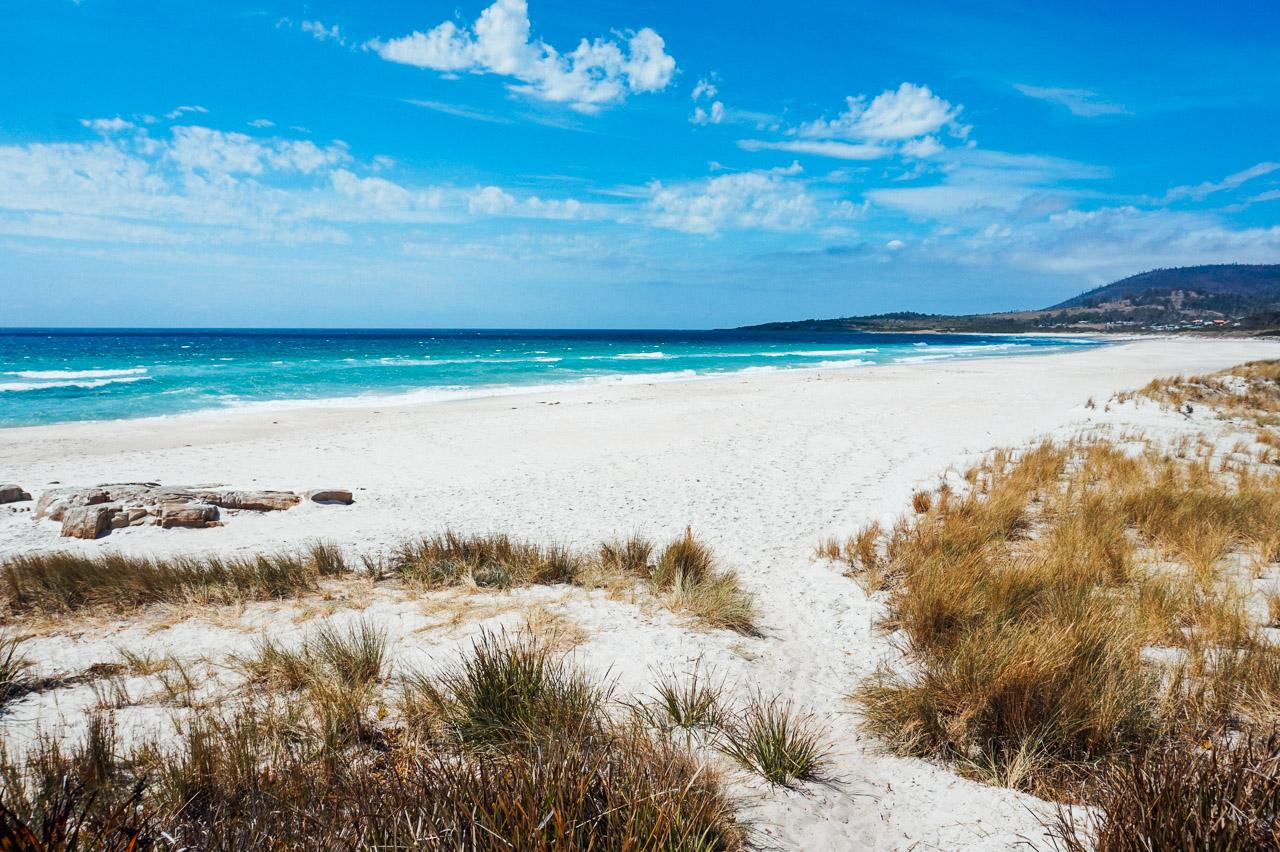Tasmania's Coast