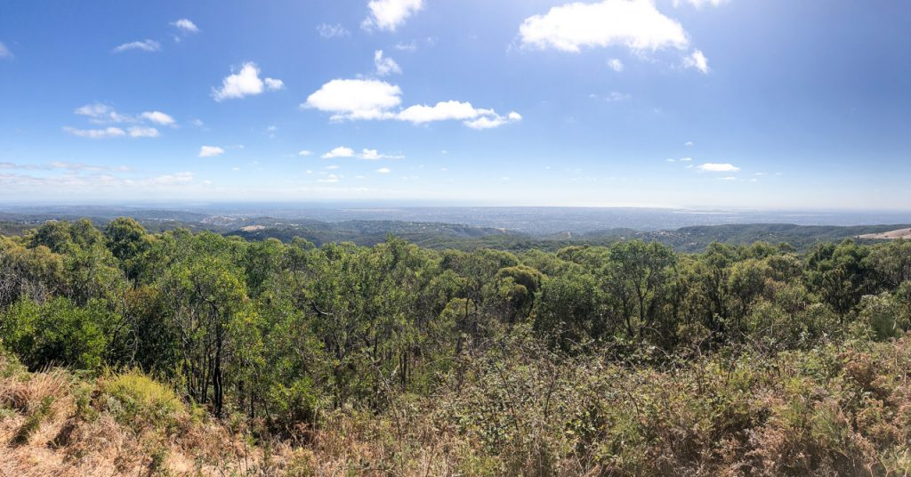 Mount Lofty