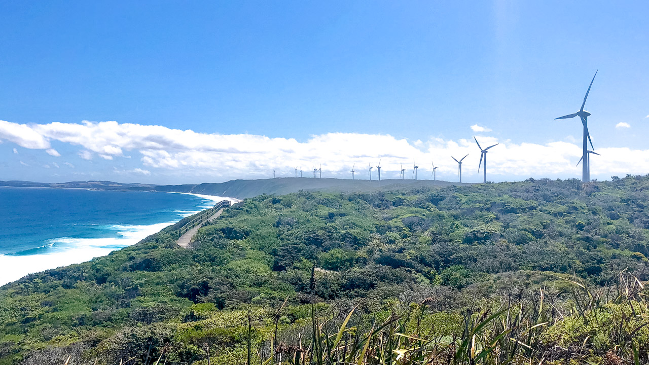 Wind Farm Albany