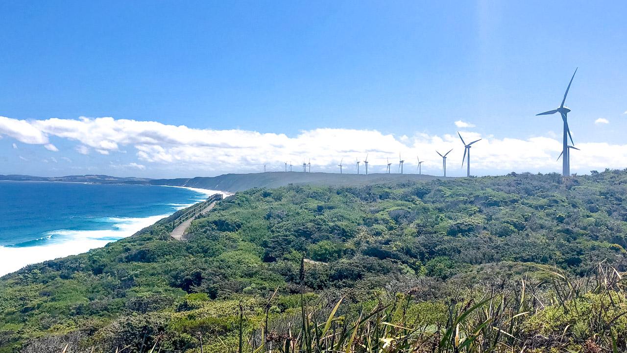 Wind Farm Albany