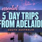 Best Day Trips from Adelaide, South Australia