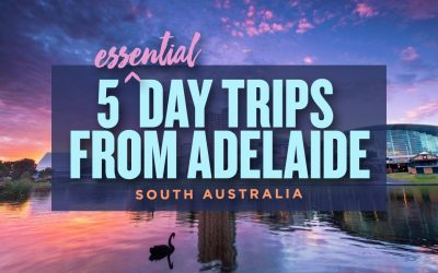 5 Essential Day Trips from Adelaide, South Australia