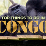 Top Things To Do In Congo