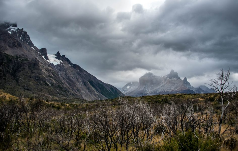 The Torres del Paine W Circuit, Patagonia