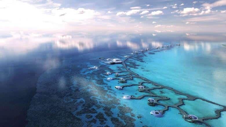 The Red Sea - Saudi Arabia