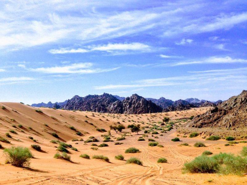Red Sand Dunes of Saudi Arabia